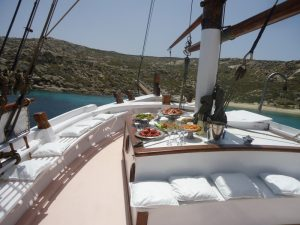 dolphins-of-delos-cruise-boat-1