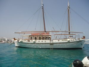 dolphins-of-delos-cruise-boat-2